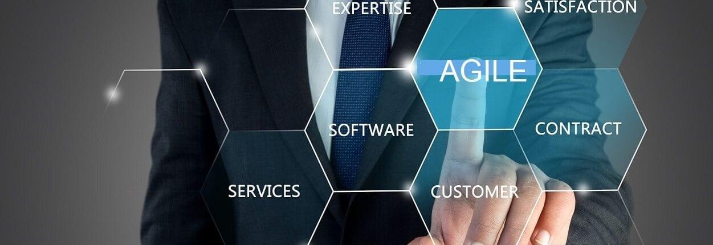 isbsg agile